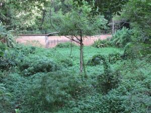 dry-river-bed-rio-rainha-parque-da-cidade