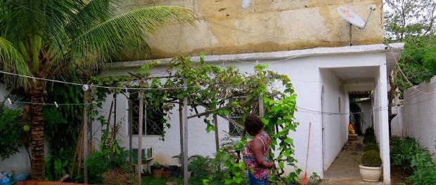 Heloisa Helena cuida de seu jardim com ervas e árvores indispensáveis para o culto