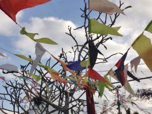 Decoração da festa junina