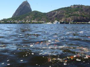 Lixo acumulado na Baía de Guanabara. Foto por Fernando Maia / UOL Mais