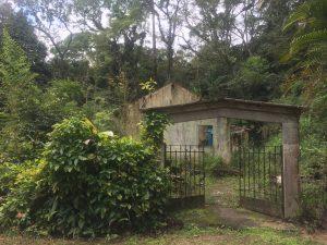 Casas na Floresta da Tijuca sem luz