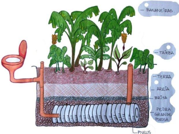 Ilustração de um sistema de bacia de evapotranspiração.