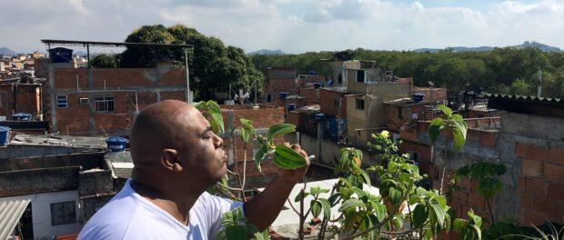 Luis Cassiano Silva começou o Teto Verde Favela.