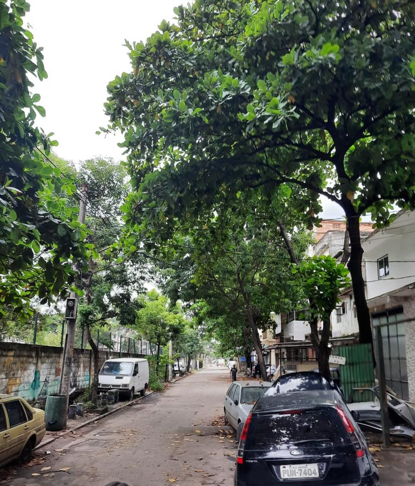Rua José Moreira Pequeno, antiga 'Vala Shopping'. Foto: Aline Marieta