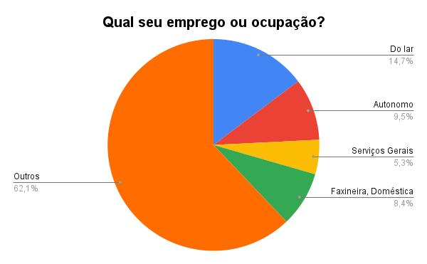Gráfico 'Qual seu emprego ou ocupação', de Julio Santos Filho baseado nos dados da pesquisa de Karina Figueiredo