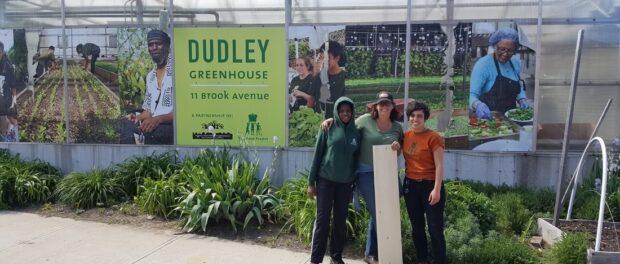 Dudley Street Neighborhood Initiative enfrentou desafios, mas ainda é um exemplo para o mundo em direito à moradia, ao lazer, à cultura e à alimentação. Foto do site do TTC Dudley Street.