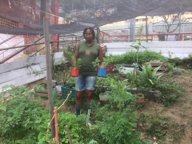 Denise Santos colhendo na horta Atitude. Foto por: Mariano Magalhães
