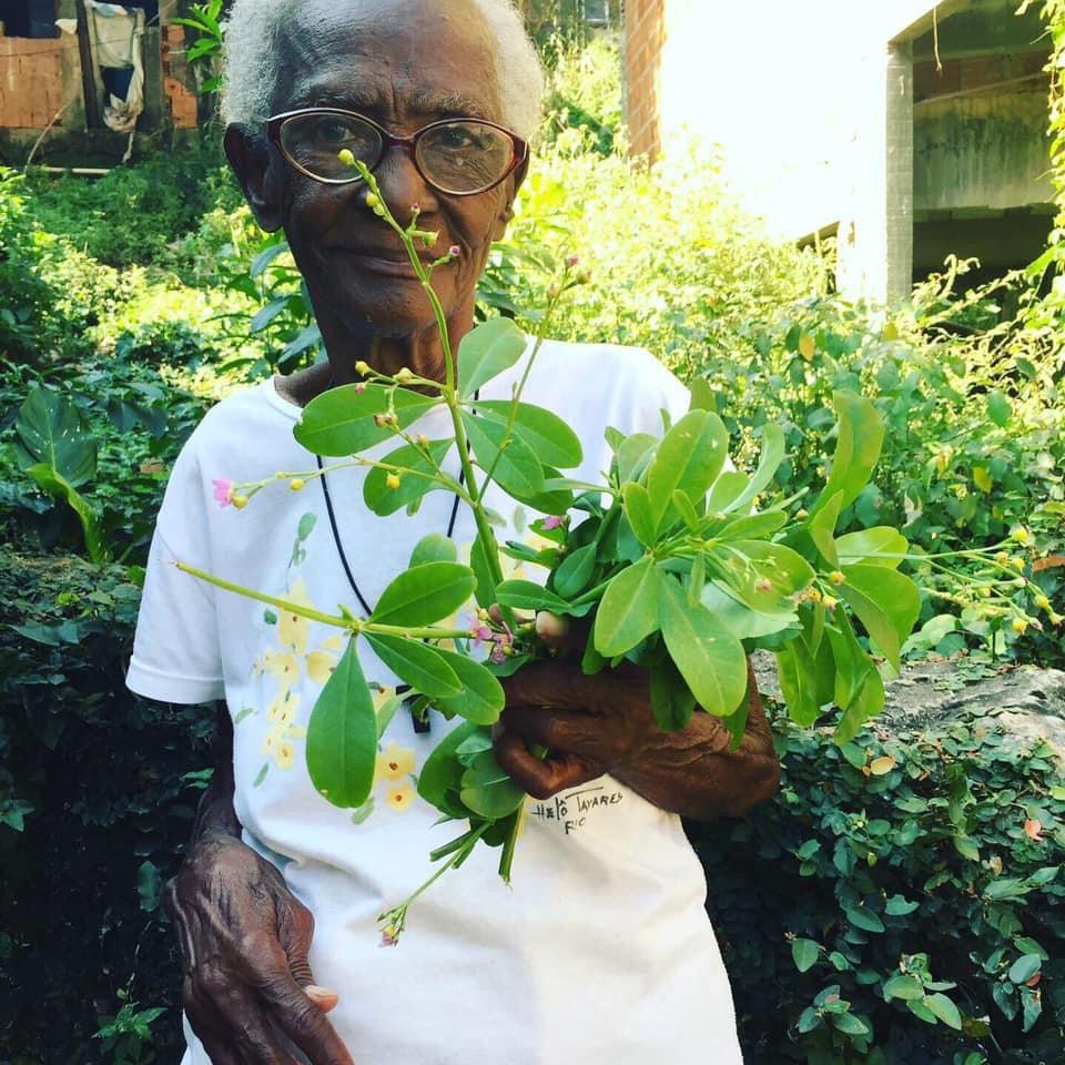 Resistência e respeito à natureza são as diretrizes ensinadas por tia Silvia e outras erveiras do Morro do Salgueiro. Foto por: Marcelo da Paz